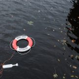 life saving ring in water symbolising cyber insurance